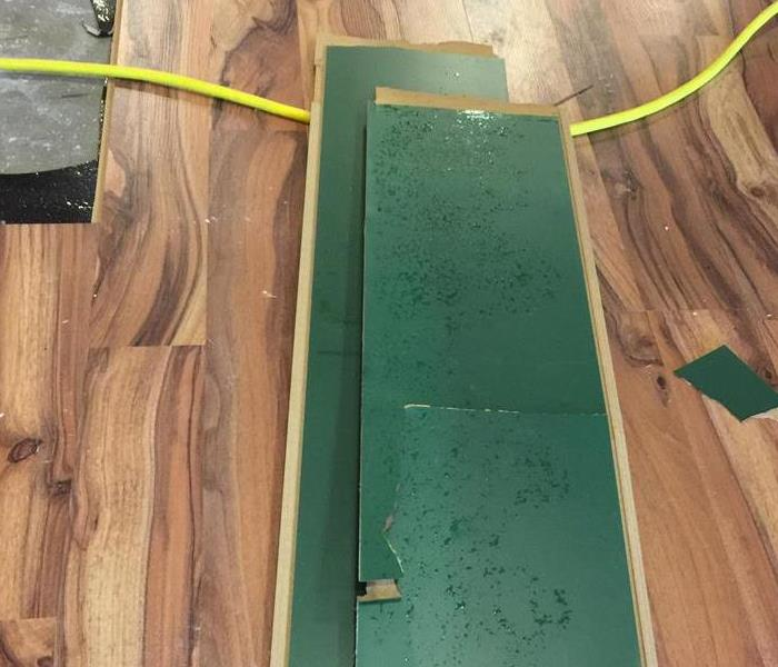 Water Damaged Laminate Floor