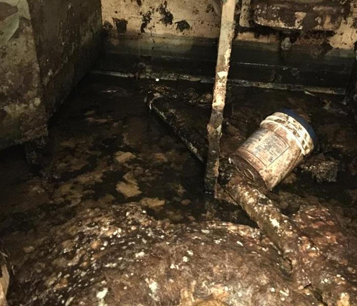 Water Damage Why use an IICRC Restoration Company