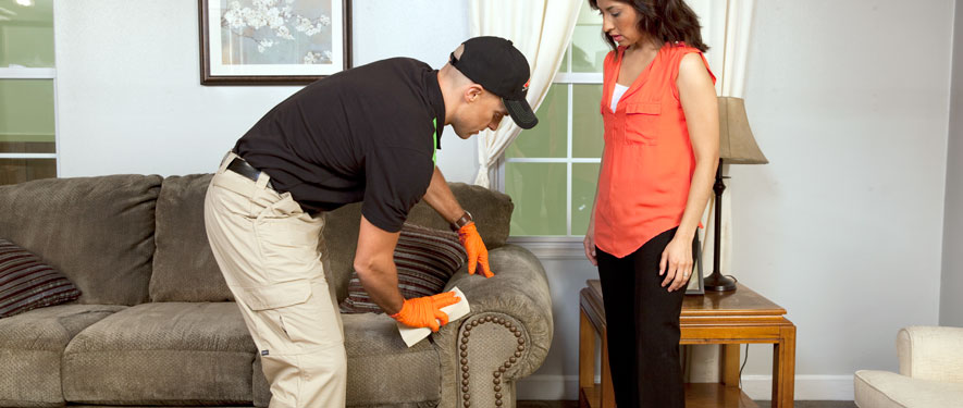 Lucas County, OH carpet upholstery cleaning